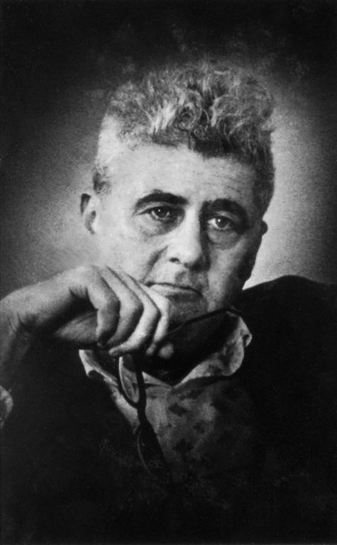 Nemerov, Howard portréja